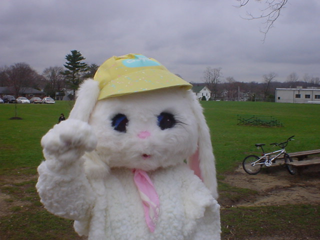 The Easter Bunny Waves Hello!