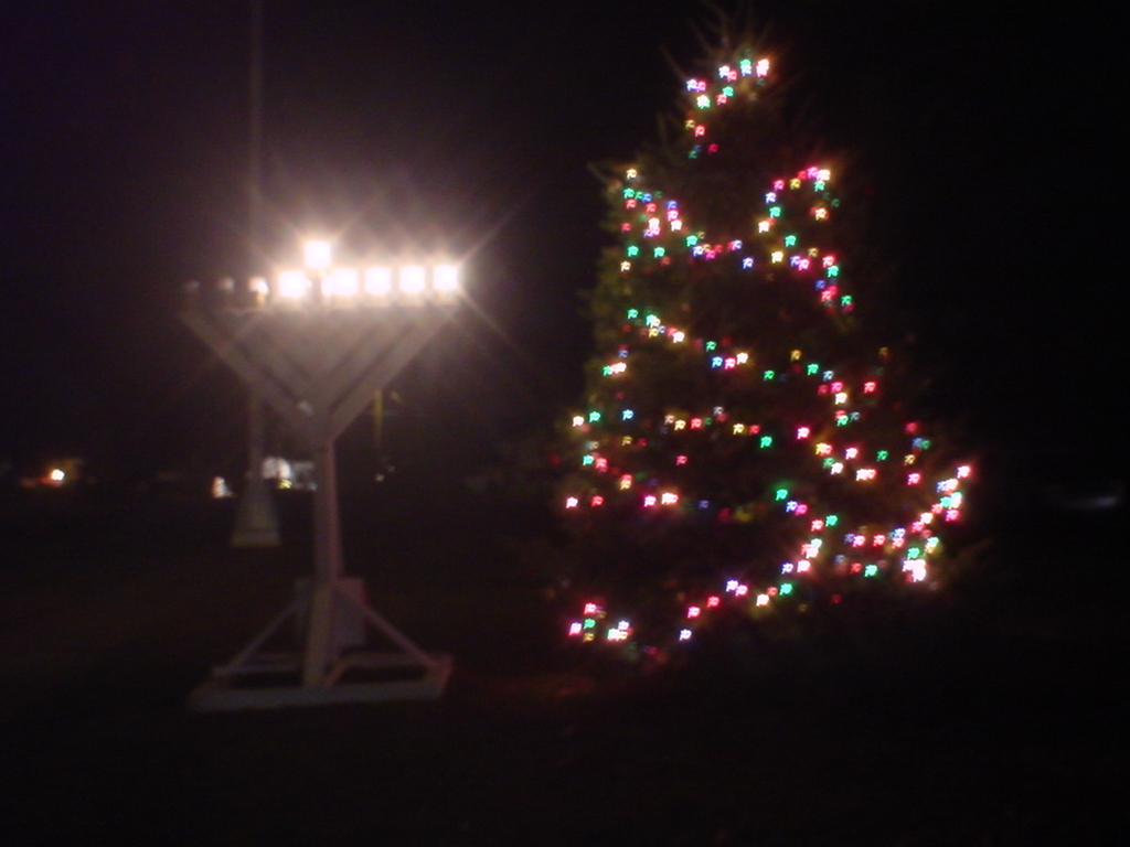 The 2004 Jamesburg Christmas Tree and Menorah.